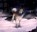 Hachiko by Cederin