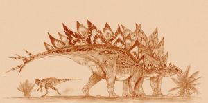 Stegosaurs by Kahless28