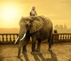Elephant and monkey by ccgreghi