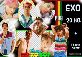 EXO_ PNG #3  { THE WAR KO KO BOP } by YUYO8812