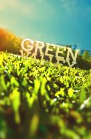 Green Valley N1 by Xtean