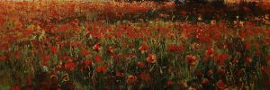 Poppies by dismwork