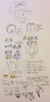 Constellation Dog ref by bubbleskitty123