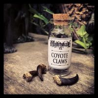 Coyote Claw Replica by Elorhan