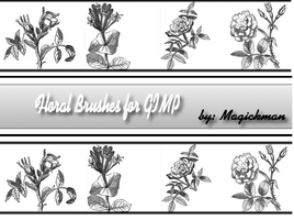 Floral Brushes for Gimp by blueeyedmagickman