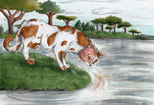 Brightheart - The Lost Face by StarlightsMarti