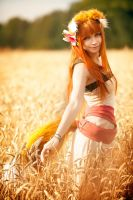 Horo in Field 6 by andrewhitc