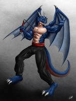 The Winged Fighter by SymbolHero