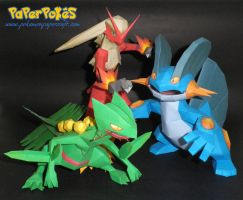 Hoenn Final Starter Evolutions by Carnilmo