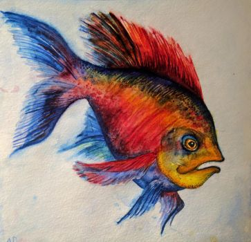 Fish by agalula