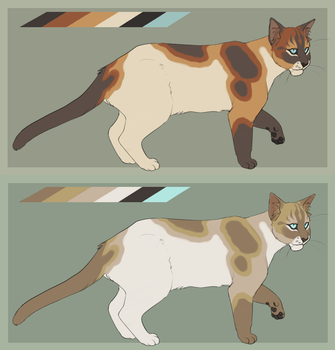 Cat adoptable CLOSED by Ziboe