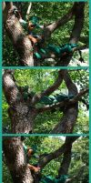Hod and Sneaky Climb a Tree by angermuffin