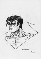 Nightwing by Arddy24