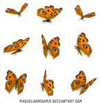 Butterflies PNG by MagicLaDyCharm
