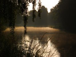 An Enchanted Morning II by Photopathica
