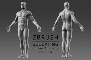 ZBrush Character Sculpting and Human Anatomy by EtherealProject