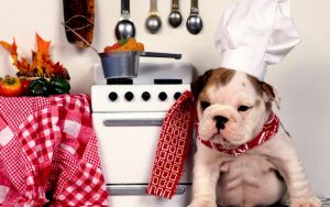 Five Star Chef by diggwallpapers