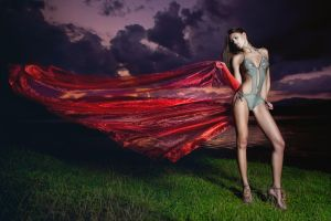 I Wish My Love Was A Red Rose by idaniphotography