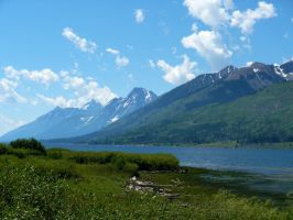Grand Teton National Park 4 by ShadowsStocks