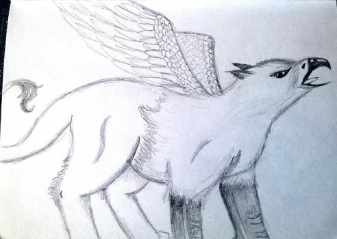 Griffin drawing by hannahmo61