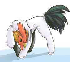 Chickenpoodle by JackxTessa