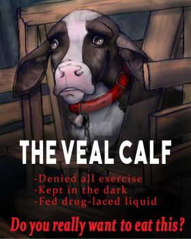 Veal Calf by Chimera-Fox