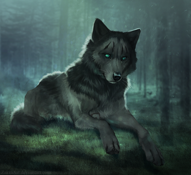 At this forest by ZakraArt