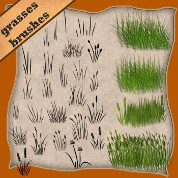 grasses by roula33
