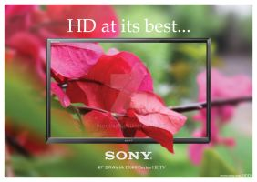 Sony Bravia Ad by iNoor88