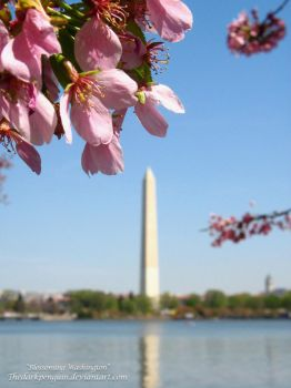 D.C. - Blossoming Washington by TheDarkPenguin