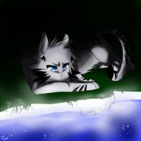 Jayfeather by WhiteFlameSoul