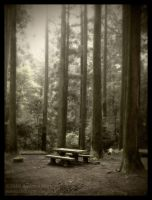 Forest Table, Mt. Sarakura by AndrewMarston