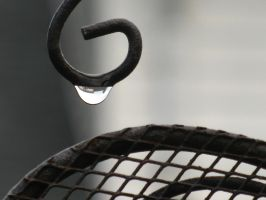 Spring Raindrop by demboys18