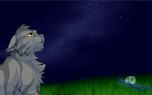 in the stars... by Layalu